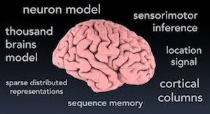 Video: Key Discoveries in Understanding How the Brain Works