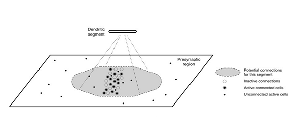 Sparse distributed representations
