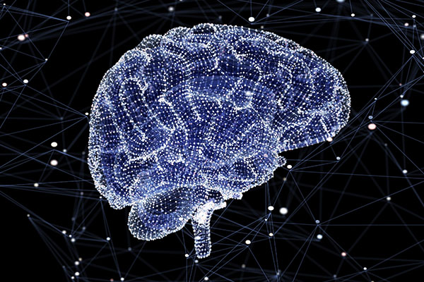 The Thousand Brains Model of Intelligence