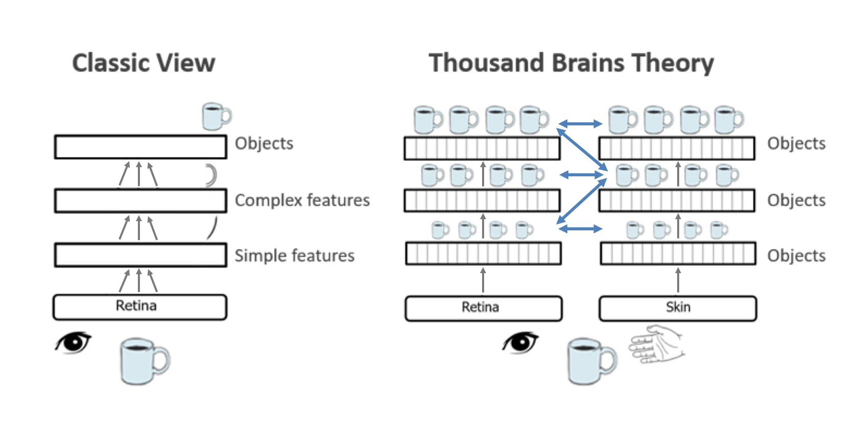 Classic Hierarchy View vs. Thousand Brains